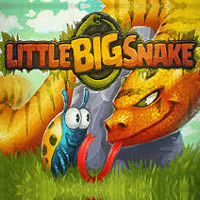 Little Big Snake .io